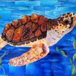 Betsy the Sea Turtle